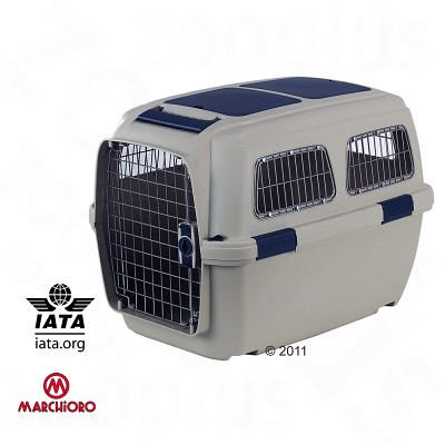 Flugbox für Beagle. IATA zertifiziert.