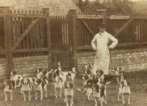 Caynsham Foot Beagle Pack 1885