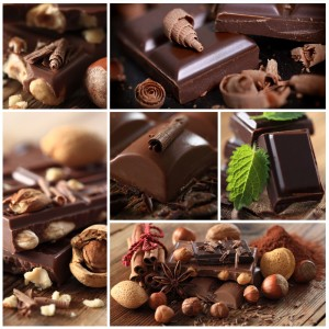 Schokolade als Belohnung für Beagle