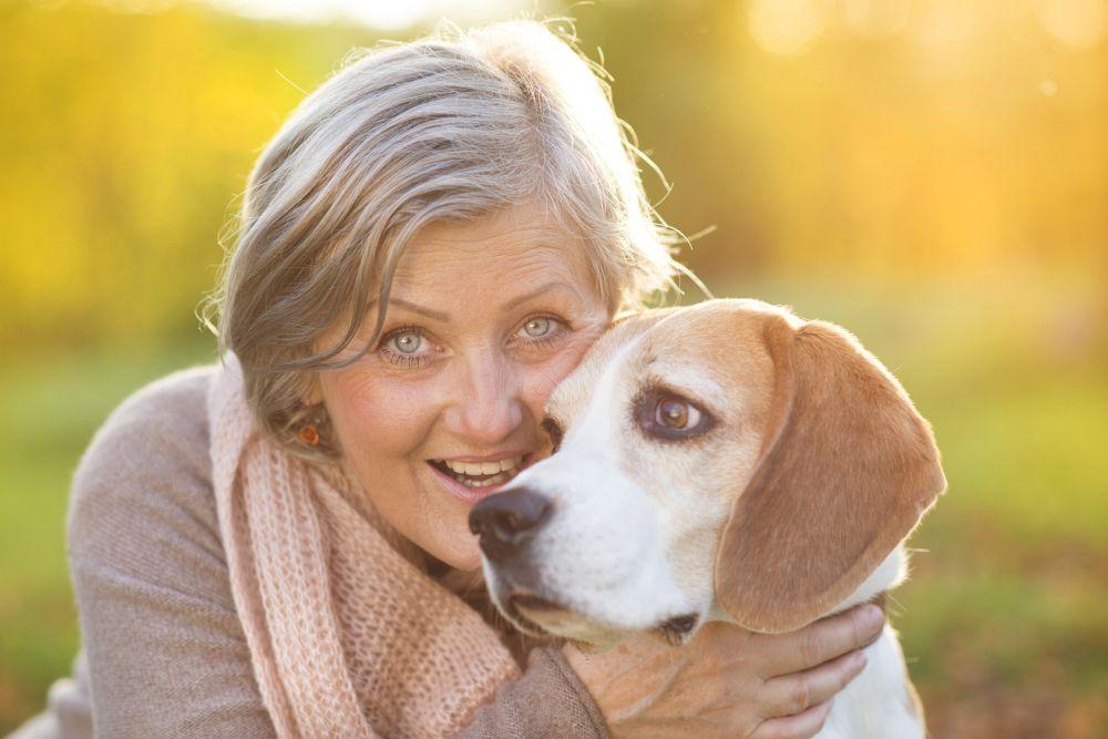 Zusammen mit dem Beagle alt werden