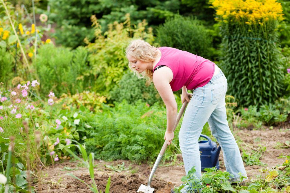 Meinen Beagle im eigenen Garten vergraben. Worauf muss ich achten?