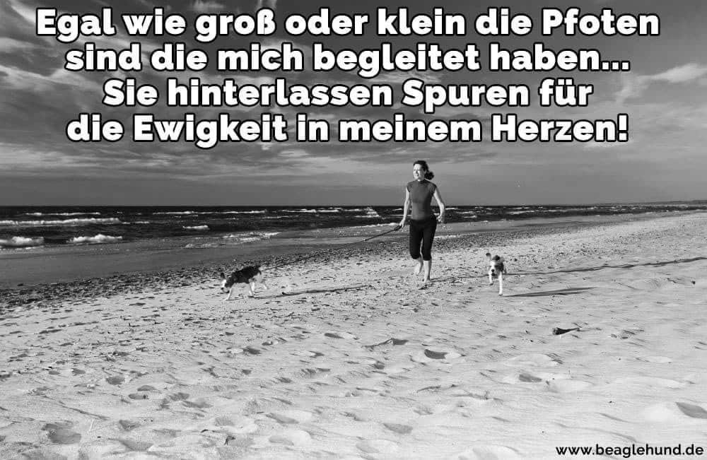 Eine Frau und ihr Beagle am Strand