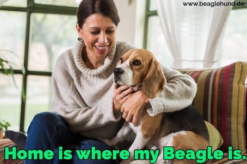 Eine Frau sitzt auf dem Sofa mit seinem Beagle