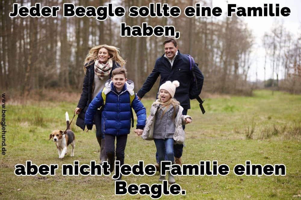 Eine Familie zu Fuß mit Ihrem Beagle im Garten