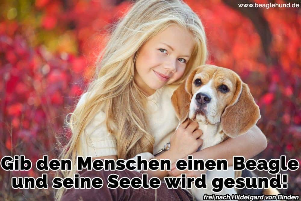 Ein Mädchen umarmt ihren Beagle