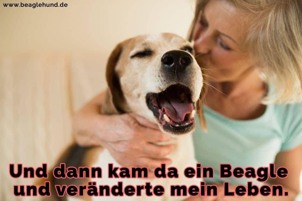 Eine Frau küsst ihren Beagle