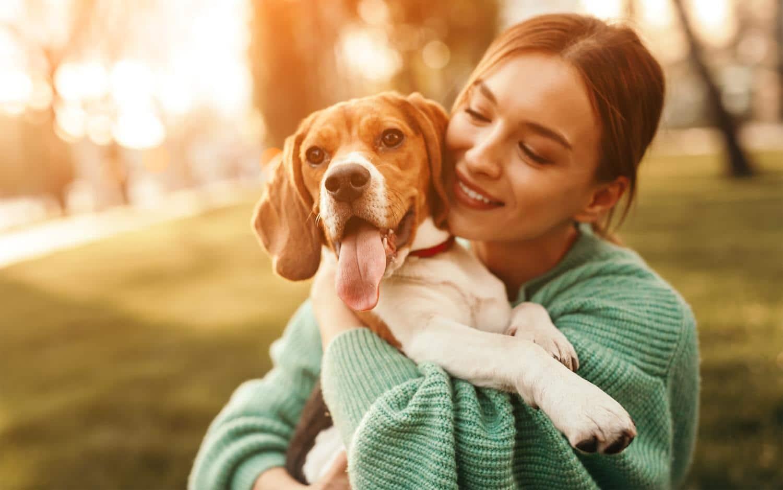 Vorteile meinen Beagle zu BARFen